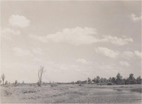 Nava 05.06.1953, fotograaf Helmut Joonuks