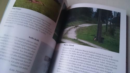 Looduse aastaraamat - Hunt