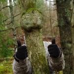 Sõbralik puu